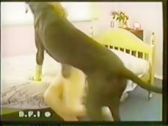 El Perro quiere follar