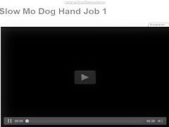 Delante de la webcam con su perro