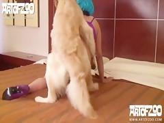 perro grande con morena