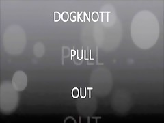 dogknott pul out