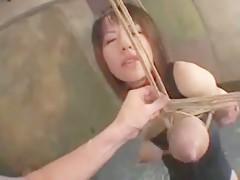 bondage hard