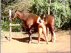 brazilian girl sucking a horse